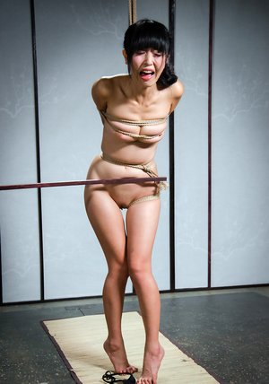 Asian Pain Porn